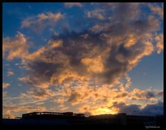 Honolulu_Sunset