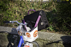 Vienna Michaud Bag on City Bike
