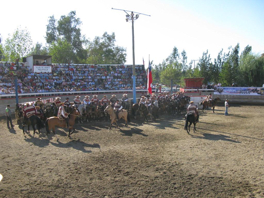 Rodeo Melipilla IMG_3868