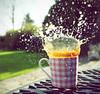 17-04-10 Splash II ~ Explored :) (Βethan) Tags: pink orange coffee garden gingham freeze frame mug splash liquid chequed coffeesplash