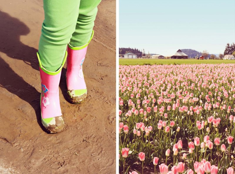 Pink Boots and Flowers