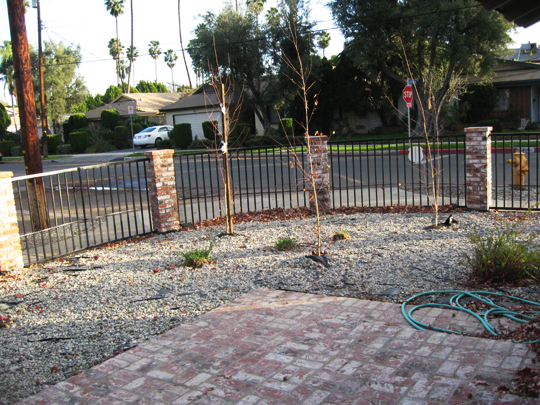 Front Yard+Rocks+Before -1