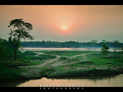 Birishiri Sunset (Shabbir Ferdous) Tags: light sunset color colour green river landscape afternoon photographer shot tone bangladesh countryroad bangladeshi netrokona travelshot ef70200mm28lisusm mymensing canoneos5dmarkii birishiri shabbirferdous shomreshwari someswari wwwshabbirferdouscom shabbirferdouscom