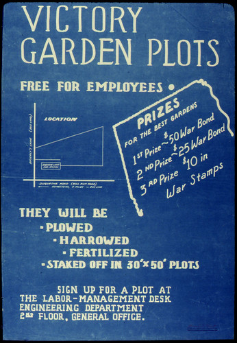 Victory Garden Plots Free For Employees ca. 1942 - ca. 1943