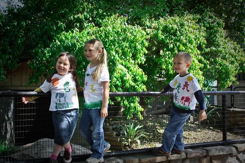 zoo fun 2
