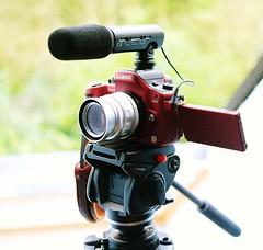 Panasonic GH1 M Mount Cosina Voigtlander 35mm f1.7 Heliar