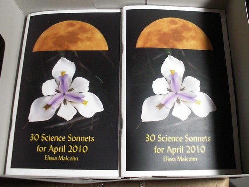 30 Science Sonnets Chapbook