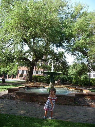 one of many savannah squares.