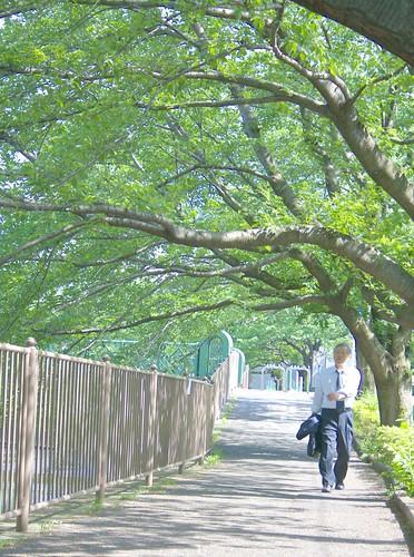 町田樹 画像30