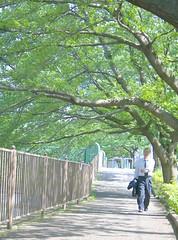 町田樹 画像56