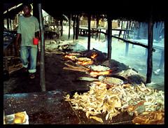 Fischmarkt in Bagamoyo