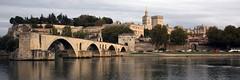 Avignon Panorama - Palai