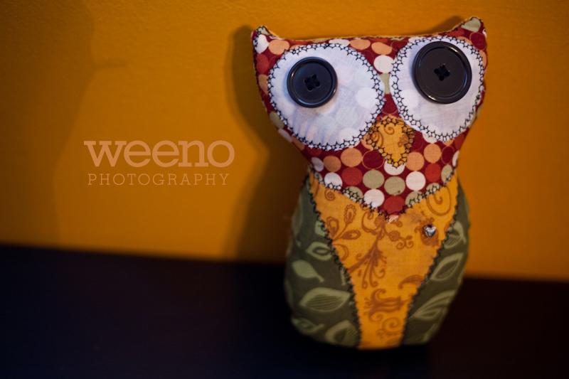 Tuks Owl (1 of 5)