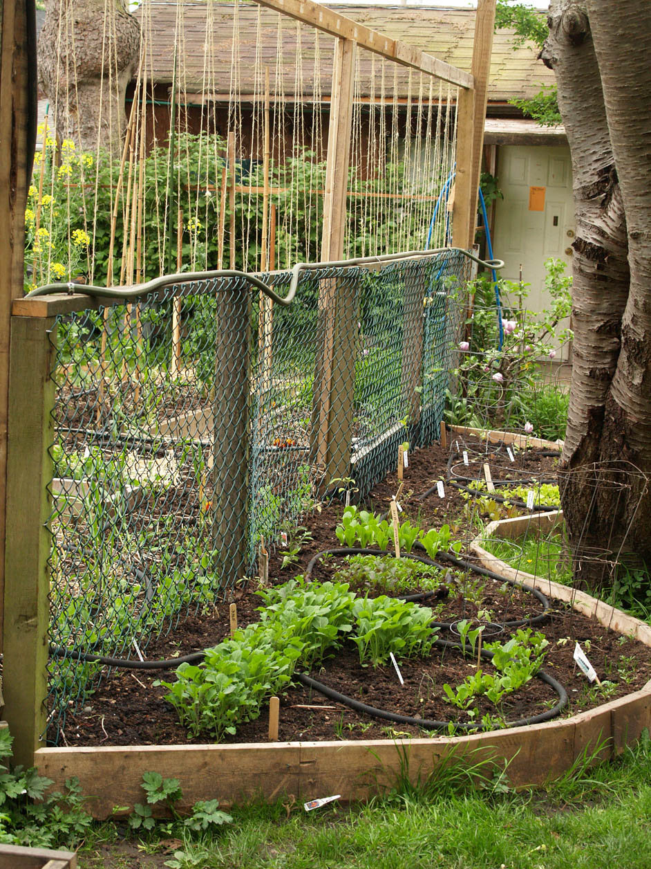 Curved Raised Garden Beds : Ideas for Garden Beds, Vertical Gardens and Intensive Gardening ...