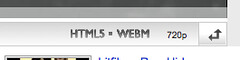 WebM/VP8