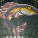 Bathroom floor tile fish