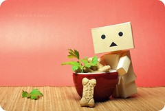 R U kidding me? / Szrakozol velem? (butacska) Tags: portrait food closeup breakfast 1870mm 2010 danbo portr danboard