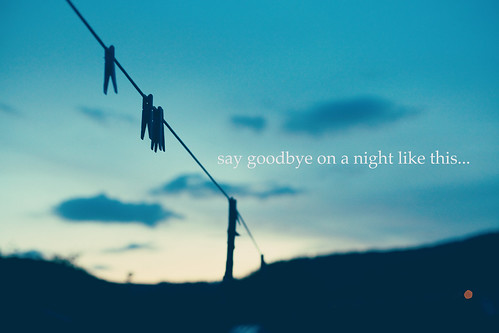 say goodbye...53/365