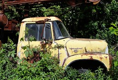 West Virginia ~ Middlebourne (erjkprunczk) Tags: abandoned truck tyler international forgotten westvirginia middlebourne erjkprunczyk wv18