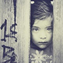 focus (Ąиđч) Tags: wood portrait andy girl face fence eyes dof child andrea daughter andrew occhi framing ritratto legno bambina faccia benedetti figlia nikond90 steccionata ąиđч