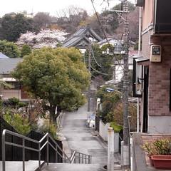 Hōshō-ji Temple 02