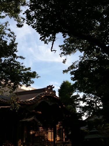 祐天寺と空