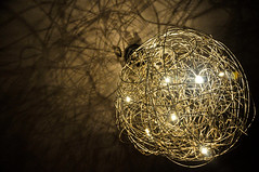 Light Nest
