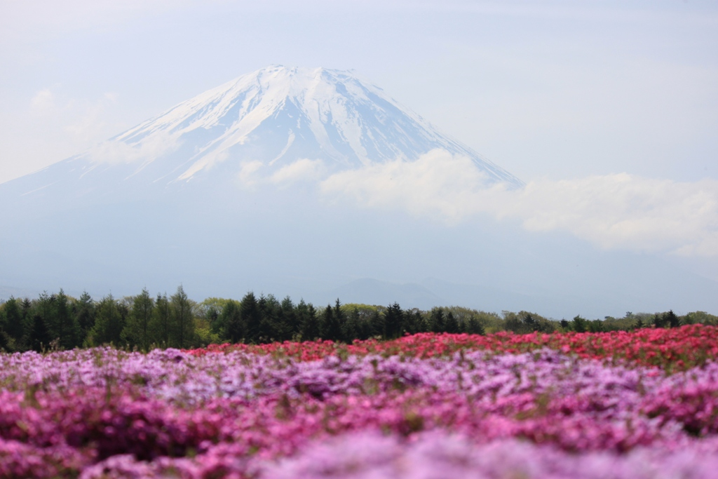 Driving around the foot of Mount Fuji
