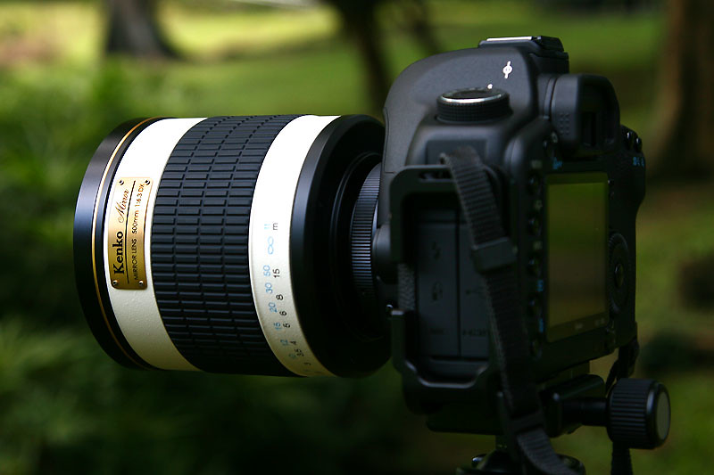 IMG_5180-w mirror lens