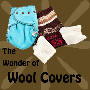 Wool Cloth Diaper Covers
