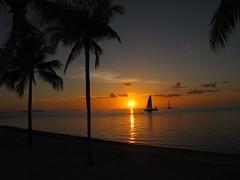 Never Look Away (psyoureacutiex) Tags: sunset west tree beautiful clouds sailboat key palm keywest