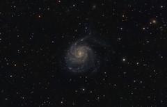 Pinwheel Galaxy (Close Crop) - 6/17/2010 (Astro-Poverty) Tags: Astrometrydotnet:status=solved Astrometrydotnet:version=14400 Astrometrydotnet:id=alpha20100623364887