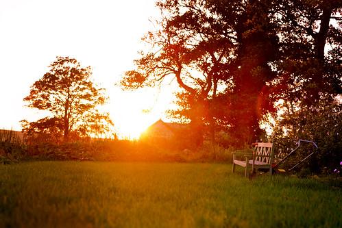 Genial Sunset Garden Re Crop/Re Edit
