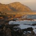 South Africa - Hermanus (Whale Watching)
