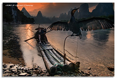 The Old Fisherman and his Cormorant [2] (DanielKHC) Tags: china old travel sunset mountain fish mountains digital reflections river landscape spread li boat interestingness high wings fishing fisherman nikon dynamic dusk guilin 5 yangshuo traditional scenic front bamboo explore page cormorant raft karst range fp dri hdr blending  d300 xingping  superaplus aplusphoto danielcheong danielkhc tokina1116mmf28