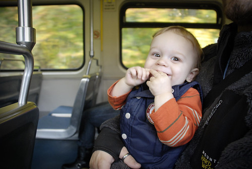 toddler on the train