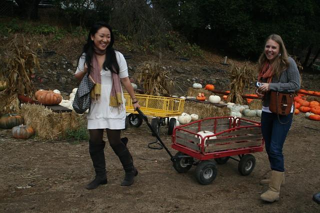 we got a wagon!