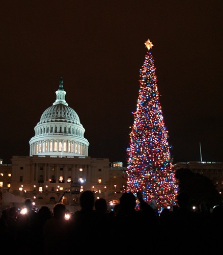 "This image of the 2009 Capitol Christmas Tree shows the final destination for this year's Tree, being harvested this weekend in Wyoming from the Bridger-Teton NF."" (US Forest Service photo by Keith Riggs)"