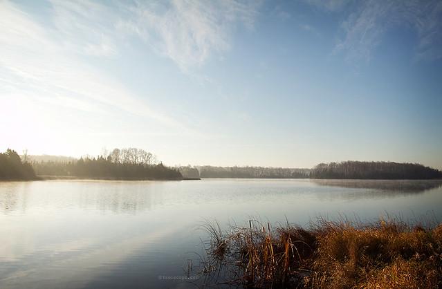 Island Lake Morning 317/365