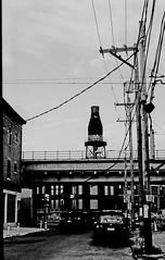 Kennsington_007_01 (mujetdebois) Tags: 35mm canonelan ilfordhp4plus blackandwhite orangefilter filmphotography filmlives filmisnotdead monochrome analogphotography blackandwhitephotography noirblanc черноеибелое negroyblanco biancoenero schwarzundweis