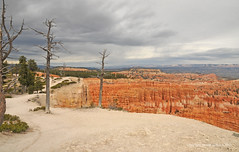 """Path around Bryce Canyon Rim (Vee living life to the full) Tags: nevada utah arizona distance layers limestone sandstone water evaporation disintegration weathering leger erosion roads route american vehicle rocks rock cliff sheer drop threat danger police mountains skyline horizon sitting geology sedimentary compression uplift wild road formation sky blue monuments valley death usa nationalpark zion pine trees nikond300 2017 holiday travel tourism tourist placestovisit traveller pleasure california leisure clouds dry hot haze walking driving temperature 80degreesplus brycecanyon grandcanyon monumentvalley """"historicalmonuments"""" glen canyon dam"""