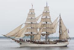 Europa 2 (Accipiter22) Tags: sailboston sailboston2017 sail boats ocean sailboats boston frigate galleon summer2017