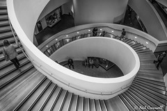 Looking Down (crezzy1976) Tags: nikon d3300 crezzy1976 photographybyneilcresswell liverpool museumofliverpool indoors stairs steps blackandwhite monochrome people uk merseyside