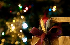 Regali sotto l'albero (Andrea Rapisarda) Tags: bokeh christmas xmas regali love peace pace gioia joy gift regalo natale andrearapisarda e620 tripod manfrotto nohdr minimalediting olympus postcards cartoline navidad noel olympuse620 rapis60 quattroterzi fourthird
