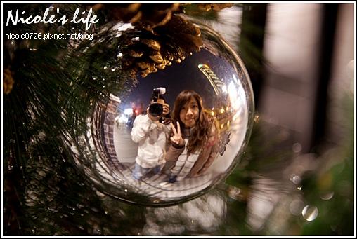 2009聖誕樹特輯