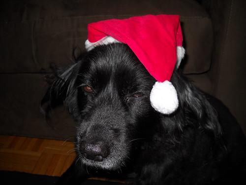 Christmas Eve 010