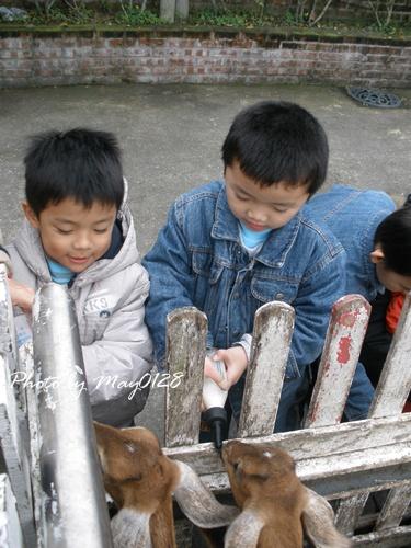 2009 12 20_41可達羊場.jpg