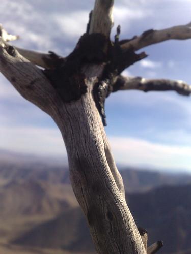 01/01/2010 - Garnet Mountain