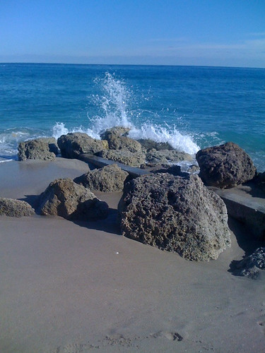 Rocks along Palm Beach, FL