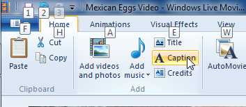 Add a caption in Windows Live Moviemaker